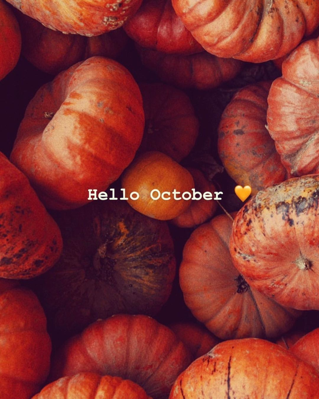 #october #octobre #newmonth #new #month #autumn #automne #potiron #hotel #hotelbordeaux #bordeaux #tourintendance #tourintendancebordeaux #hoteltourintendance #hello #picoftheday #sun #season #businesstrip #bordeauxmaville #city #trip ©️ @daphnemoreau #octobreautomne #october #octobre #newmonth #new #month #autumn #automne #potiron #hotel #hotelbordeaux #bordeaux #tourintendance #tourintendancebordeaux #hoteltourintendance #hello #picoftheday #sun #season #businesstrip #bordeauxmaville #city #hellooctober
