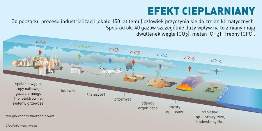 Utrzymywanie Zdrowej Wagi Ciala Mogloby Przyczynic Sie Do Redukcji Emisji Gazow Cieplarnianych Pisze Quot International Journal Of Epidemio Desktop Screenshot