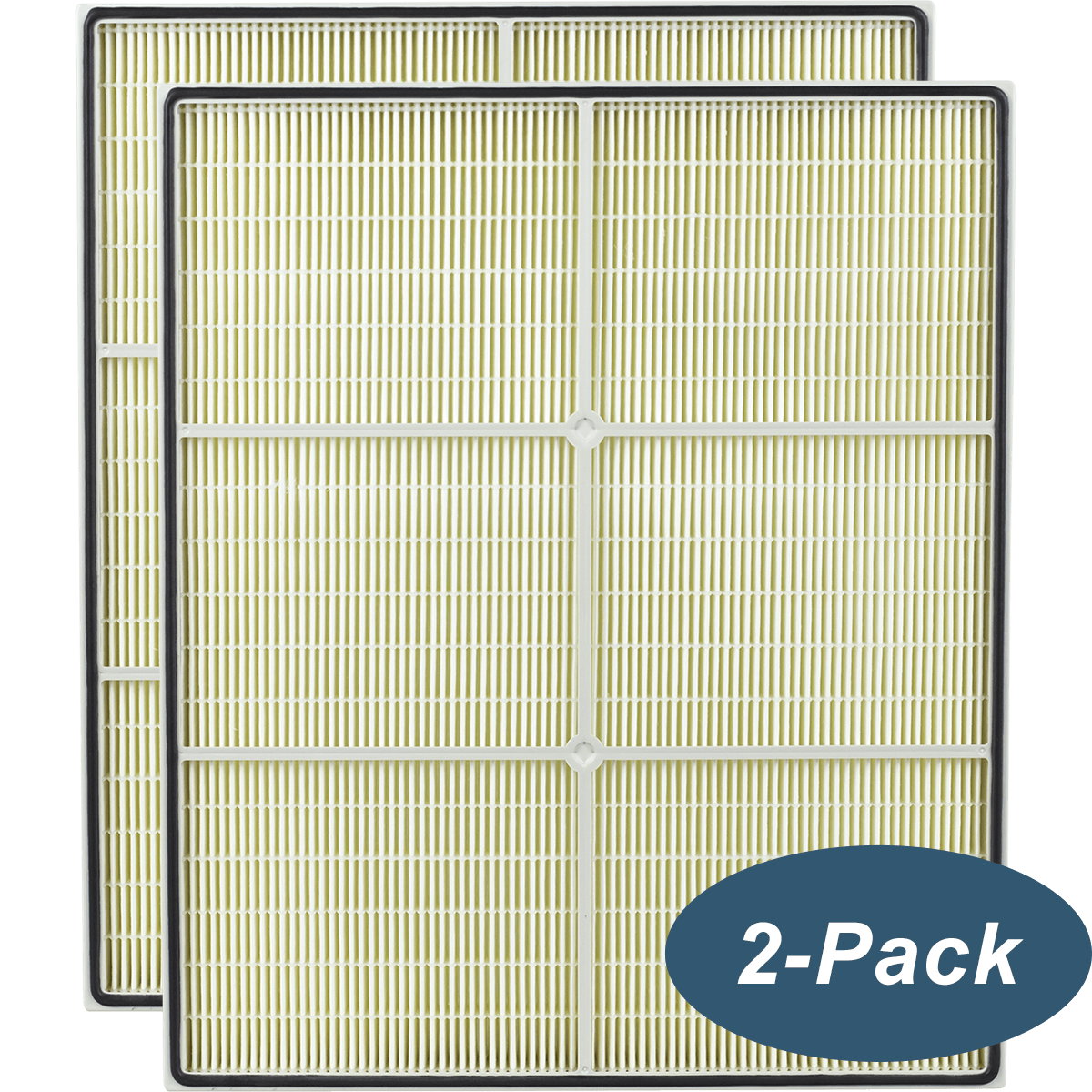 Buy Cheap DriEaz HEPA 500 Replacement HEPA Filter 2 PACK