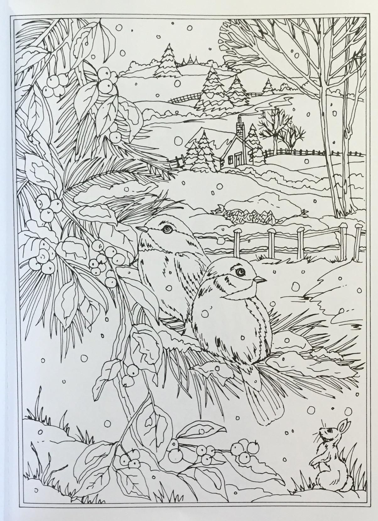 Adult Coloring Books Christmas Fun 2 with 75 Grayscale Coloring ... | 1660x1204