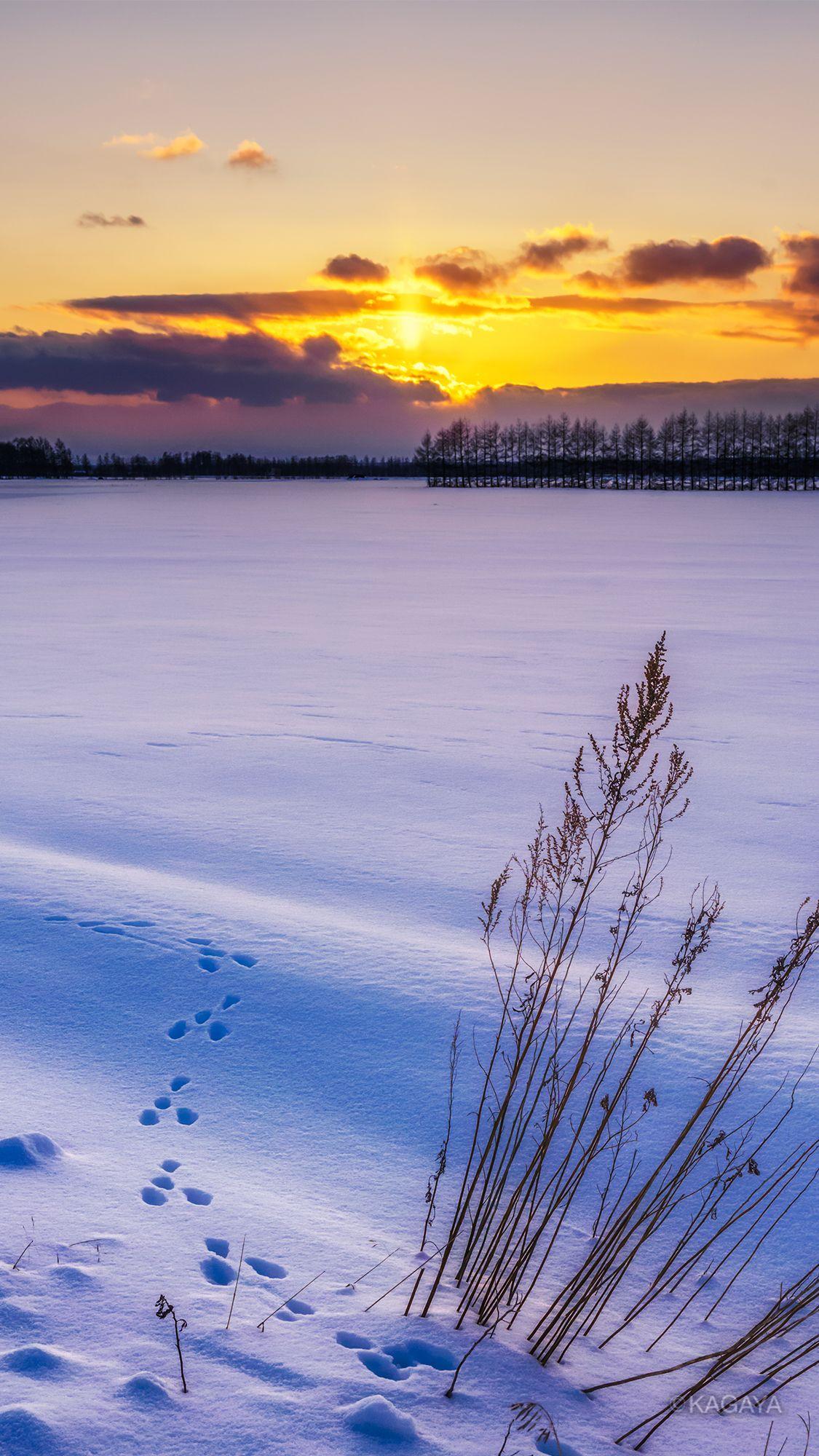 Kagaya On 冬の壁紙 綺麗な風景 壁紙