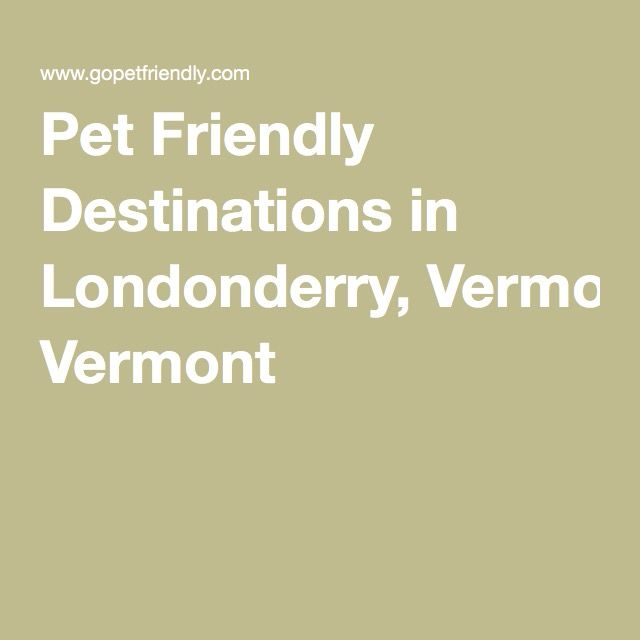 Pet Friendly Destinations in Londonderry, Vermont