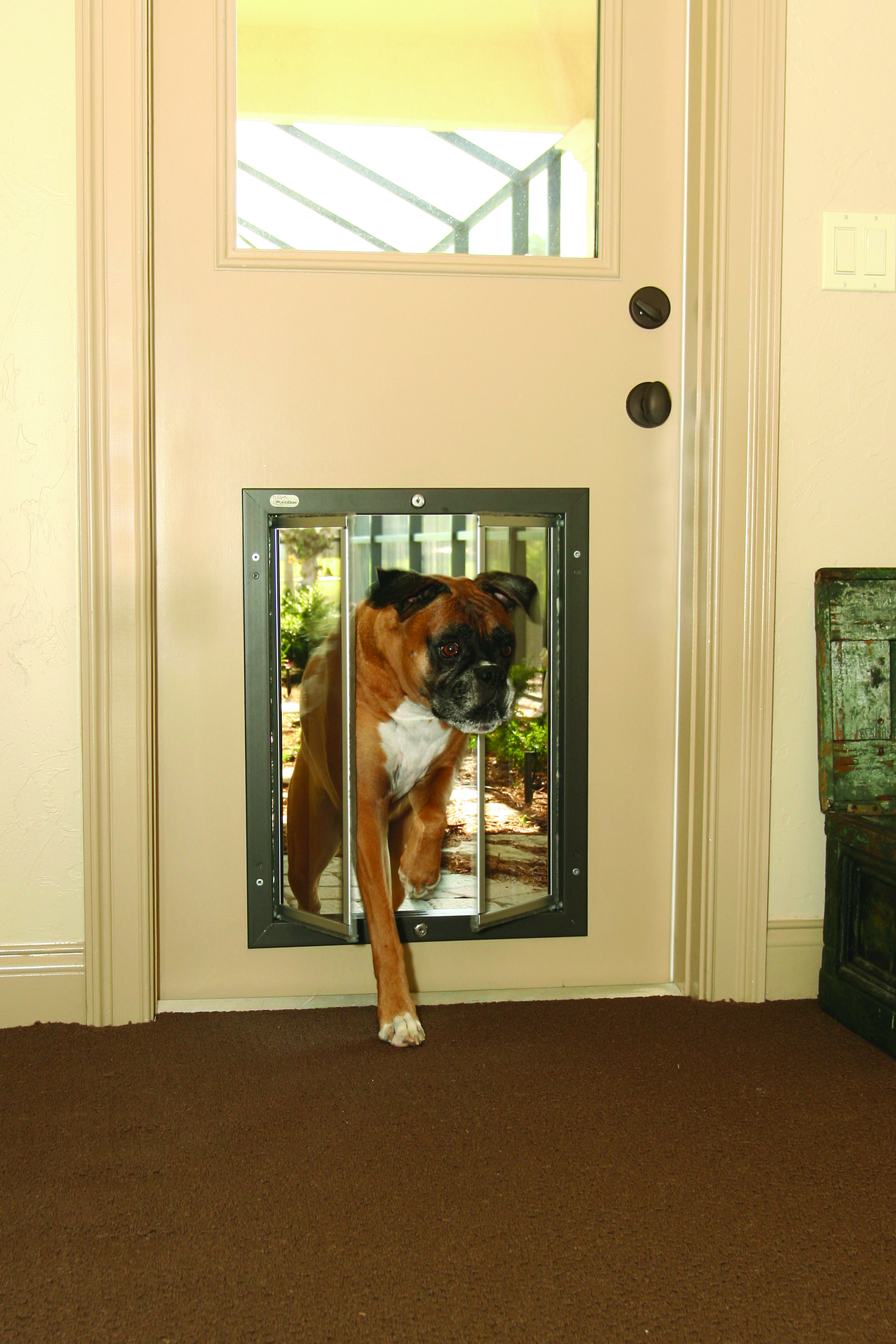 Our Xl Plexidor Door Series Doggie Doors Are Great For Large And Giant Dog Breeds Such As Great Danes Rottweilers And Newfo Large Dog Door Dog Door Dog Rooms