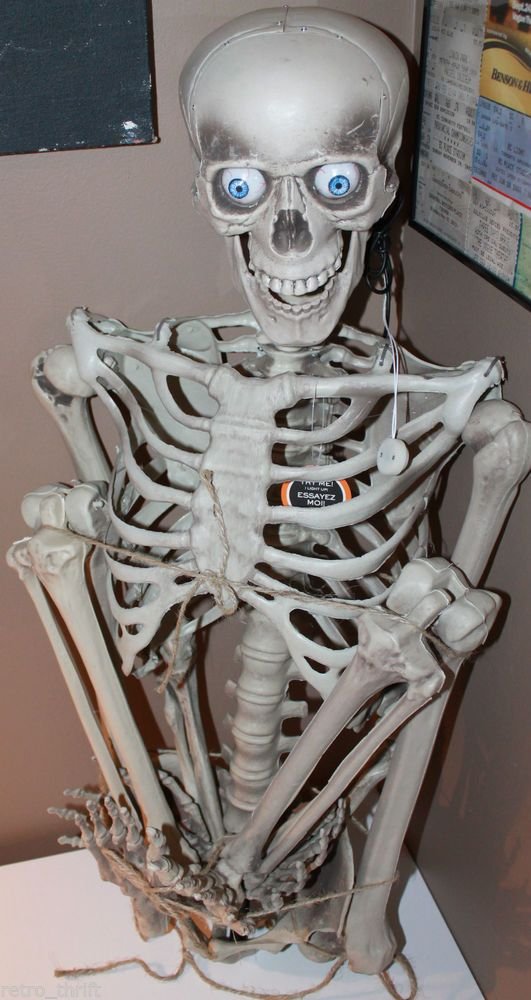 63 inch talking skeleton lights animated halloween plugs into mp3 player see video - Talking Halloween Skeleton