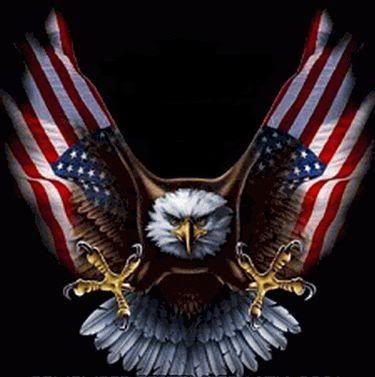e4c950169a4b3 american eagle with american flag