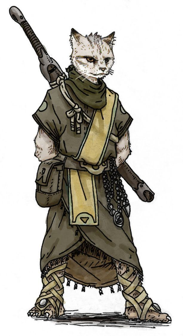 Tabaxi Monk Cat Character Character Art Character Inspiration They are rarely evil, with most of them driven by curiosity rather than greed or other dark impulses. pinterest