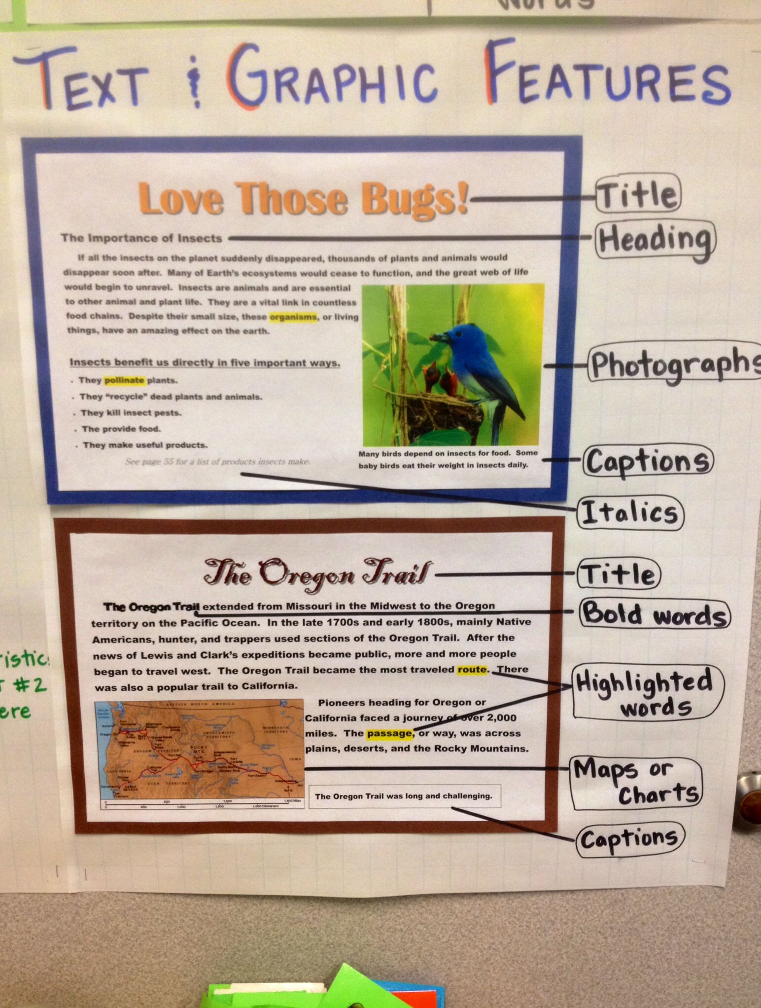 Text And Graphic Features Anchor Chart 4th Grade