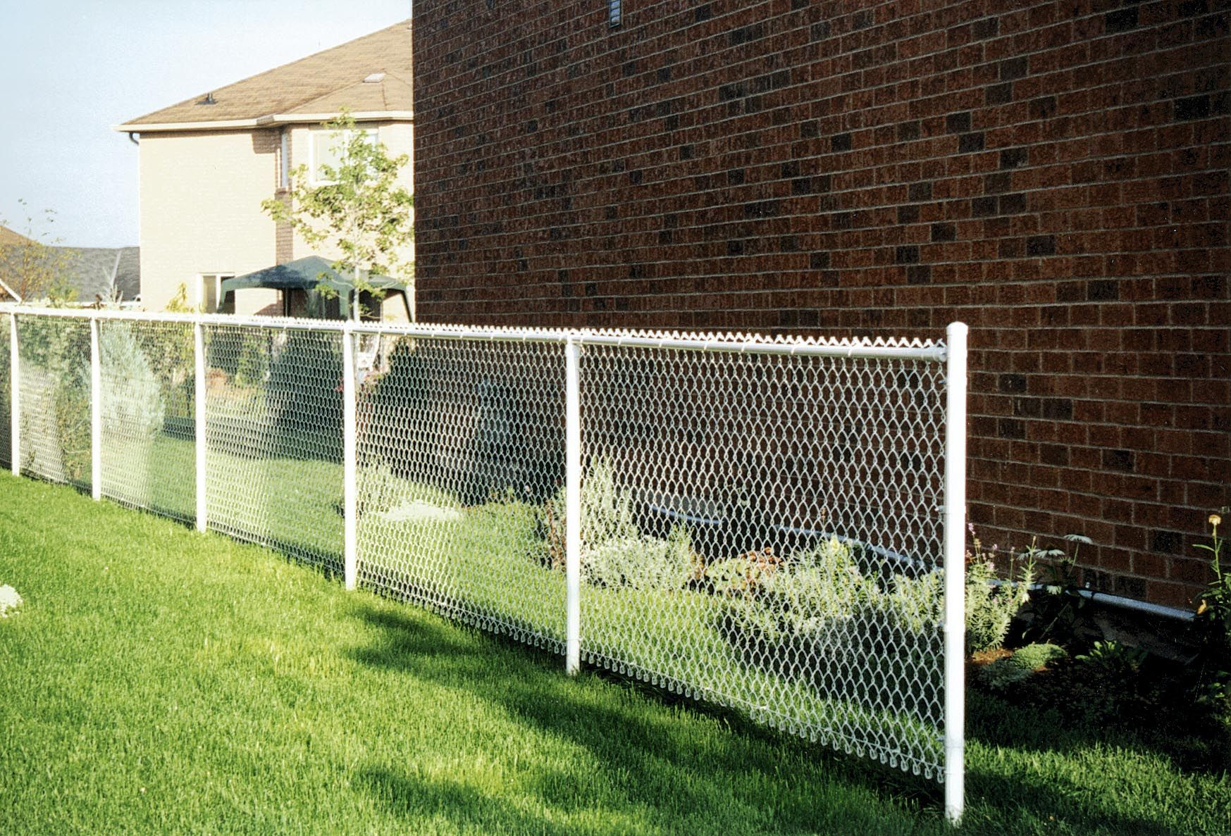 White Chain Link Fencing Residential Chain Link Fence Backyard Fences Outdoor Fencing