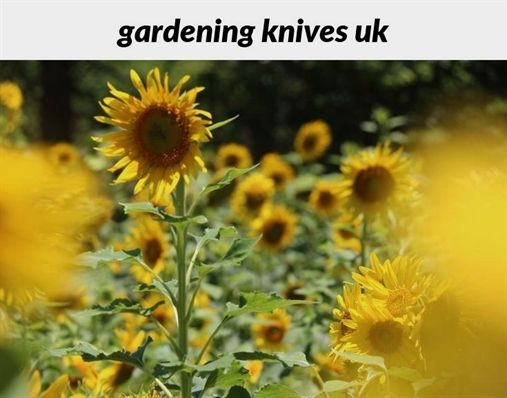 #gardening Knives Uk_432_20180915174020_53 Vegetable #gardening Supplies  Online, Dish Garden Planters For Sale,