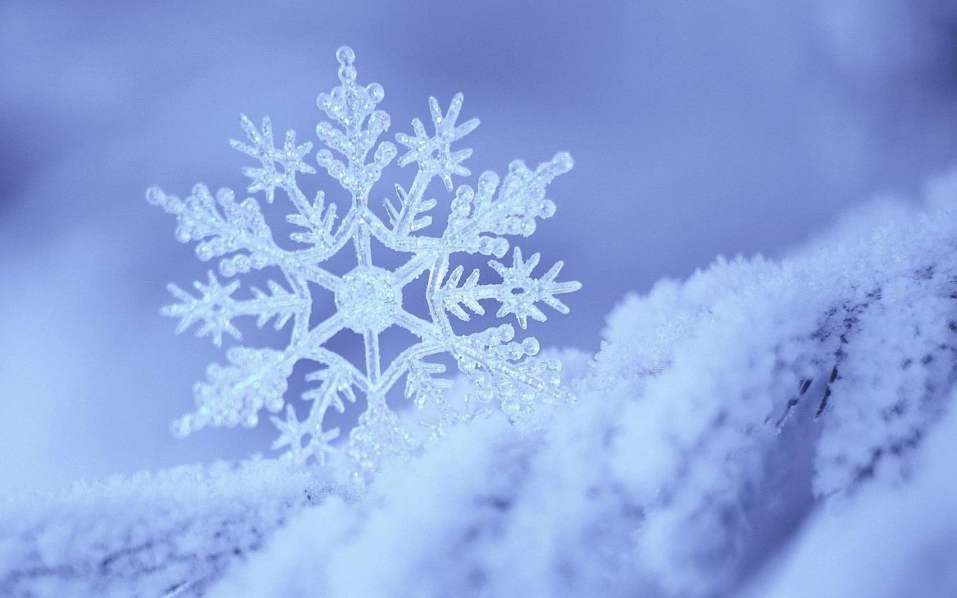 Beautiful snowflake wallpapers Desktop