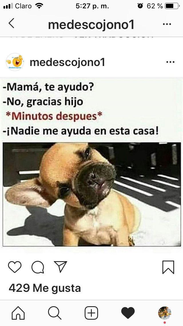 Pin De Jess18 Siganme Los Buenos En Euu Memes Divertidos Memes Para Reir Memes Espanol Graciosos
