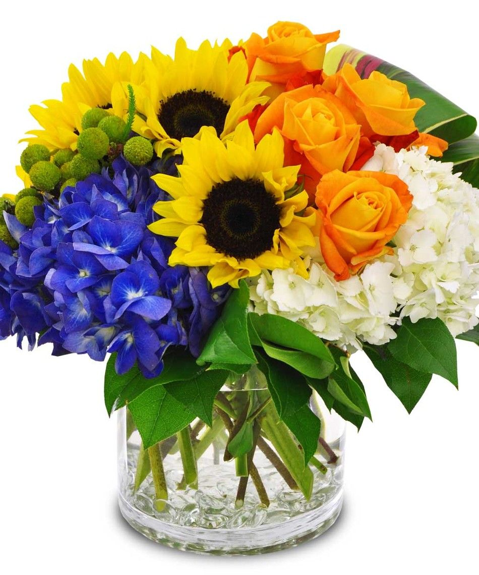 Get Well Happy Day Houston Flowers Co Houston Tx