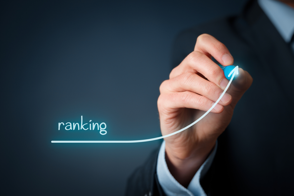 SEO Perfect Ranking