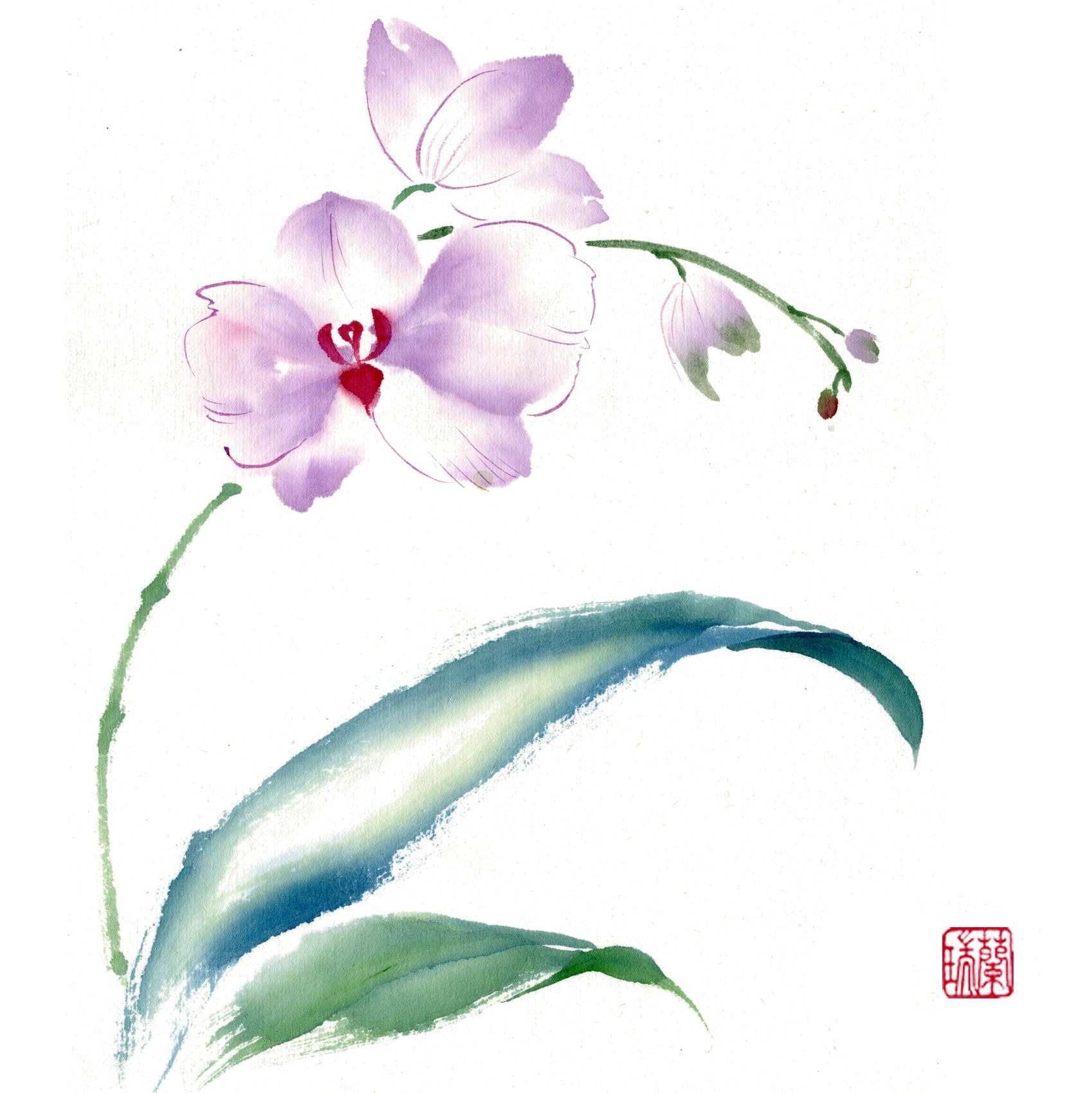 Brush Painting Phalaenopsis Orchids Gentle Whisper By Nan Rae Orchids Painting Chinese Painting Flowers Flower Painting