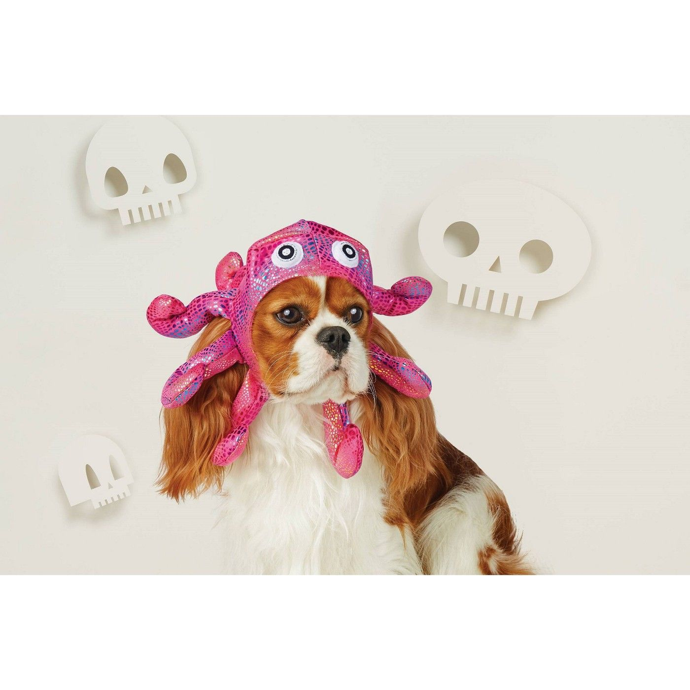 Halloween Kitty Kit Head and paws Adult Costume One Size