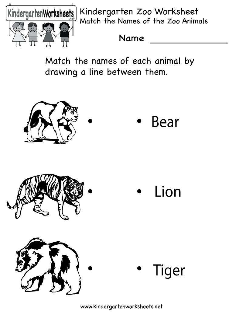 Kindergarten Zoo Worksheet Printable | Things For Homeschool ...