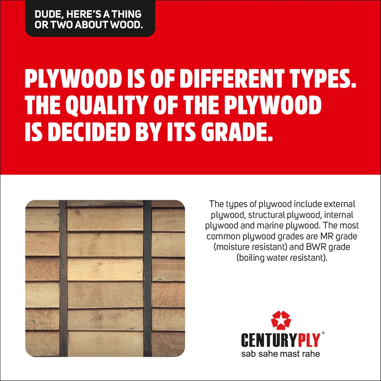 Facts you wouldn't Know about wood. Centuryply