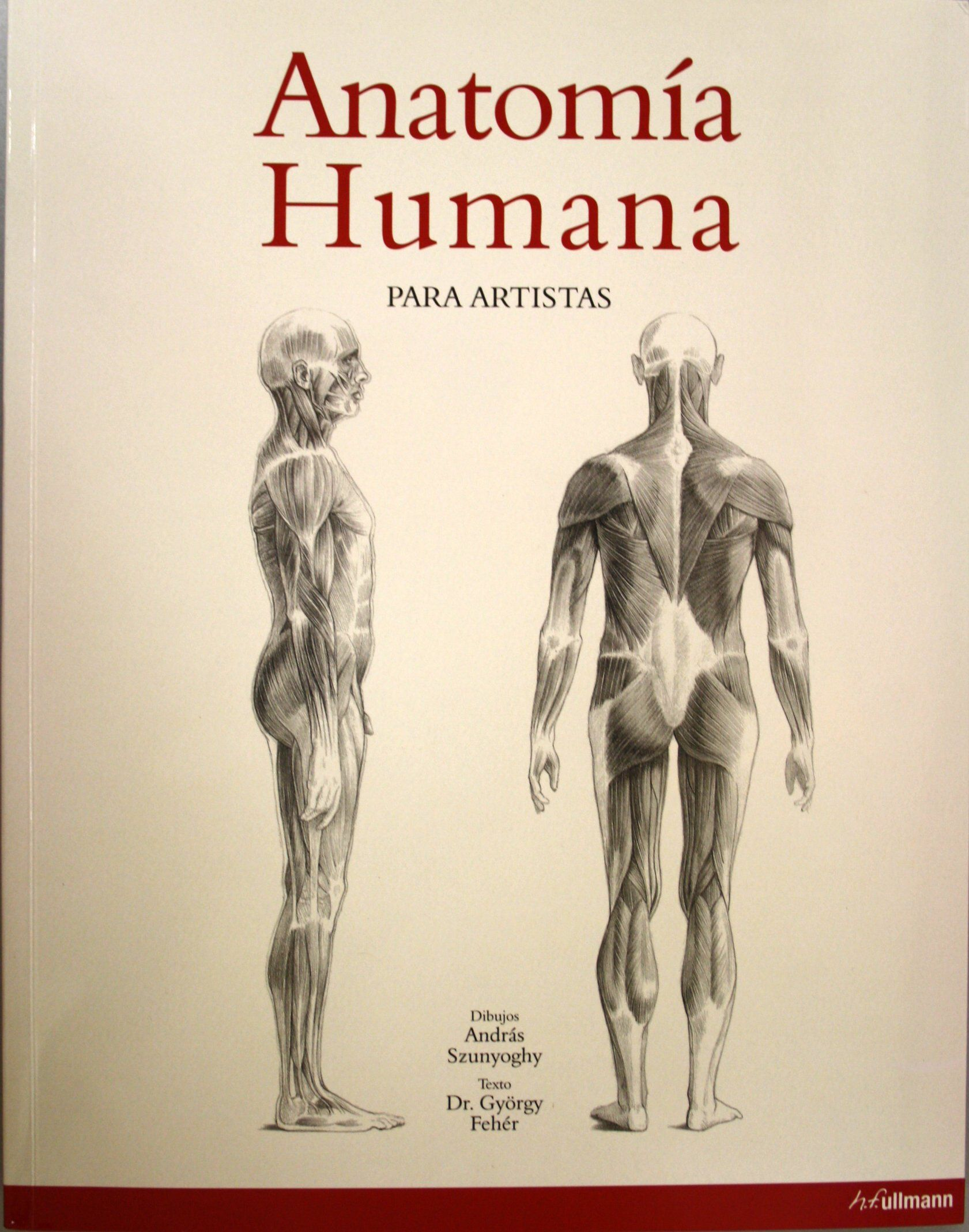 Anatomía humana para artistas / dibujos de András Szunyoghy , texto ...