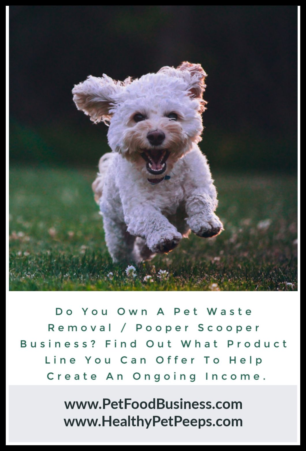 Do You Own A Pet Waste Removal / Pooper Scooper Business