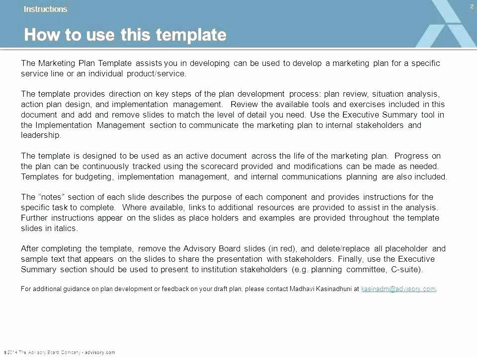 Personal Marketing Plan Template New Individual Marketing Plan
