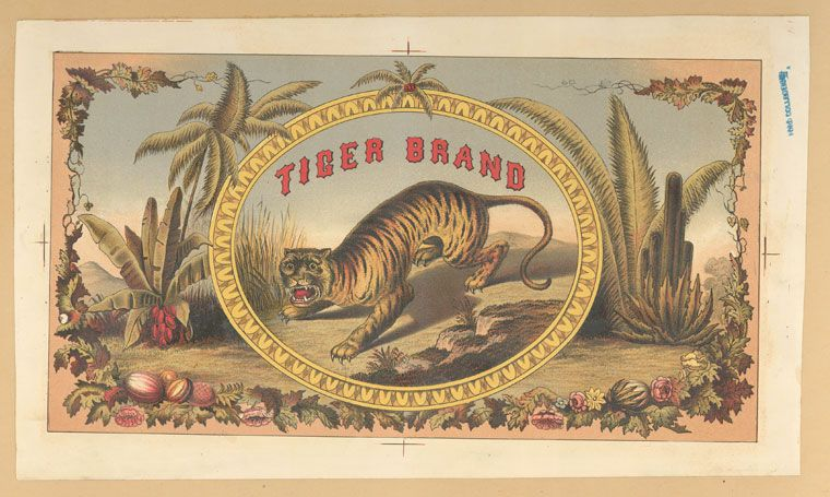An advertisement for Tiger Brand depicting a tiger in a tropic environment.                  ([c1876-1890])