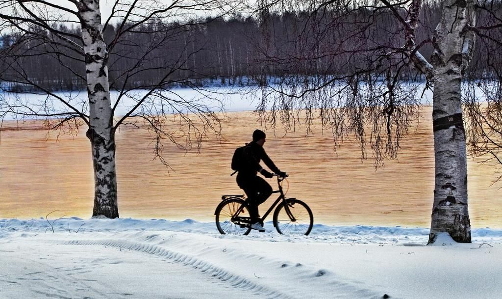 In Oulu, Finland there is good bicycle road maintenance through winter