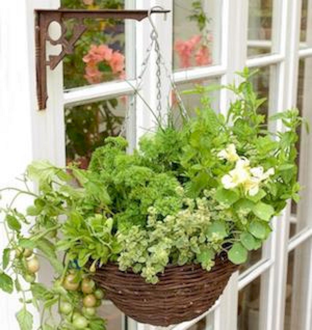The Best Indoor Herb Garden Ideas For Your Home And Apartment (No 04)