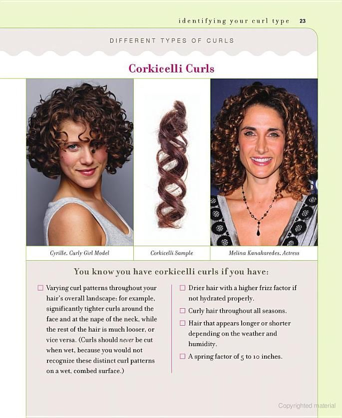 CORKICELLI CURLS: Identify your curl type from Curly Girl. I have ...