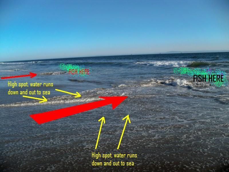 Surf fishing rigs google search fishing surf for Beach fishing rigs