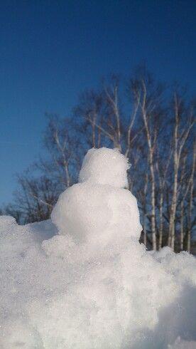 きぶんは、冬ソナ@羊山の裏の雪山