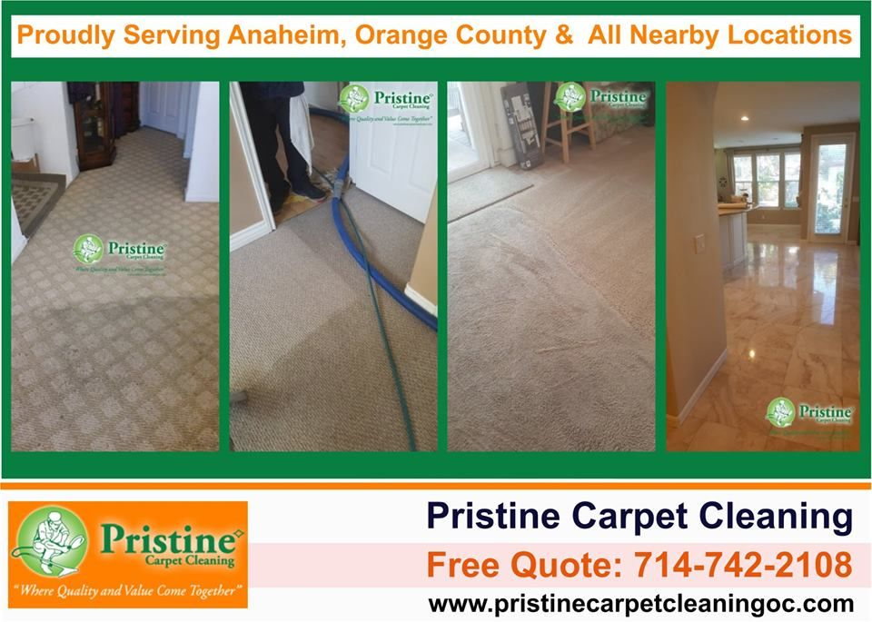 Fast 1 Hour Dry Time Safe For Children Pets Call Us Today Fastest Dry Time Same Day How To Clean Carpet Clean Tile Grout Sealing Grout