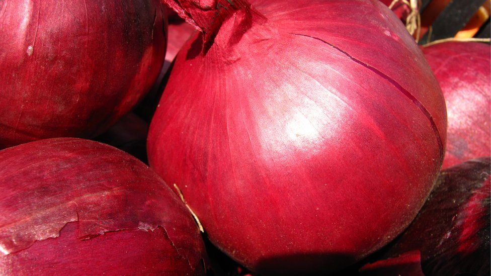 """Why are Iranians joking about onion prices? https://tmbw.news/why-are-iranians-joking-about-onion-prices  A sharp increase in the price of onions has caused consternation amongst social media users in Iran.According to BBC Monitoring, onions used to cost between 1,000 and 1,500 tomans (30p; 39 cents). Now they are selling for around 4,400 tomans.According to the Islamic Republic News Agency , Agriculture Minister Mahmoud Hojjati said """"the black market and a light reduction in production""""…"""