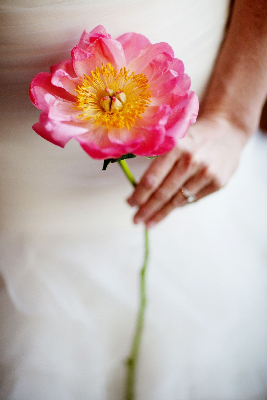 Fresh Flower Wedding Accessories Hairstyles From Verbena Floral Design Coral Peony BouquetPeonies