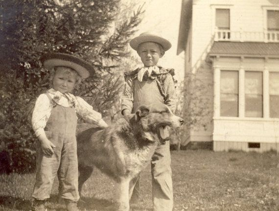 Buster Brown Children With Family Dog Photo Circa By Niepcegallery