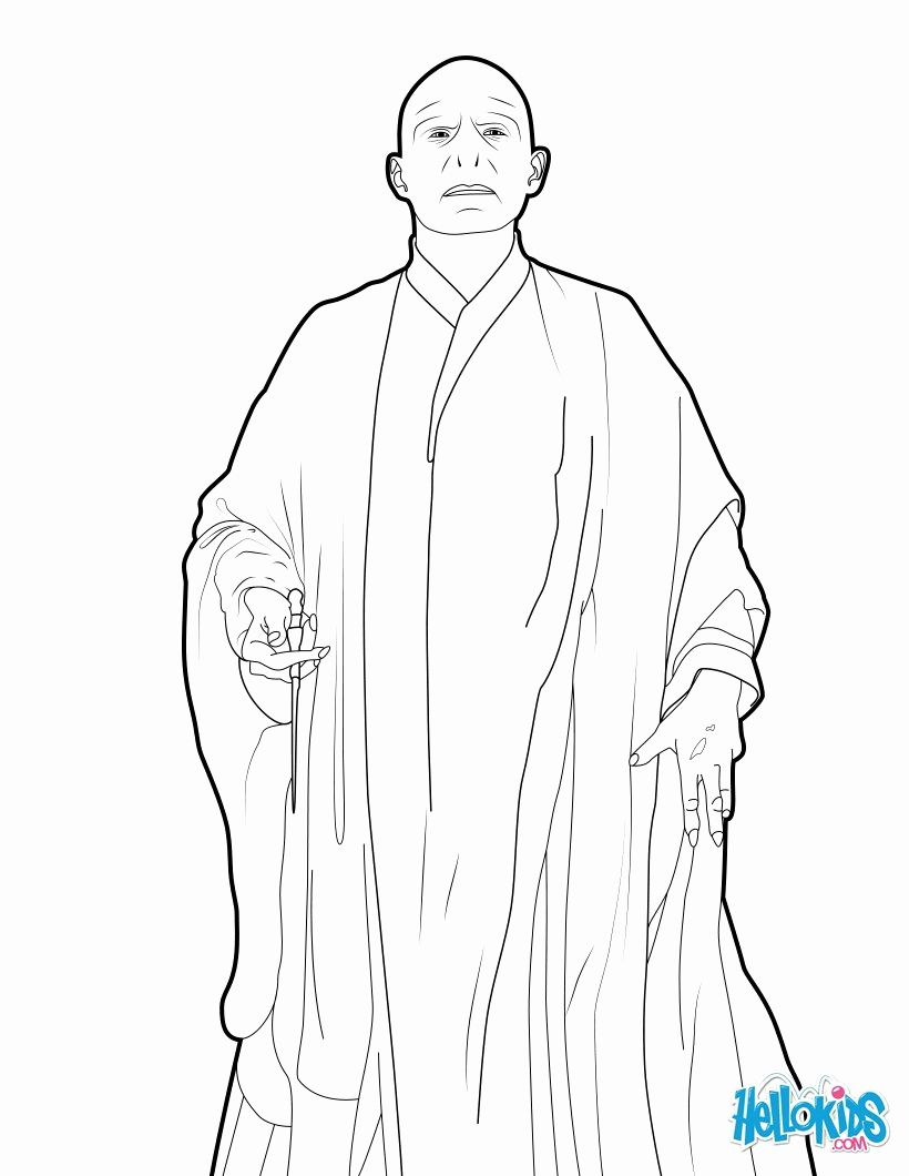 Lego Lord Voldemort Coloring Pages For Kids Harry Potter Coloring Pages Harry Potter Colors Voldemort