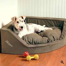 Corner dog bed.