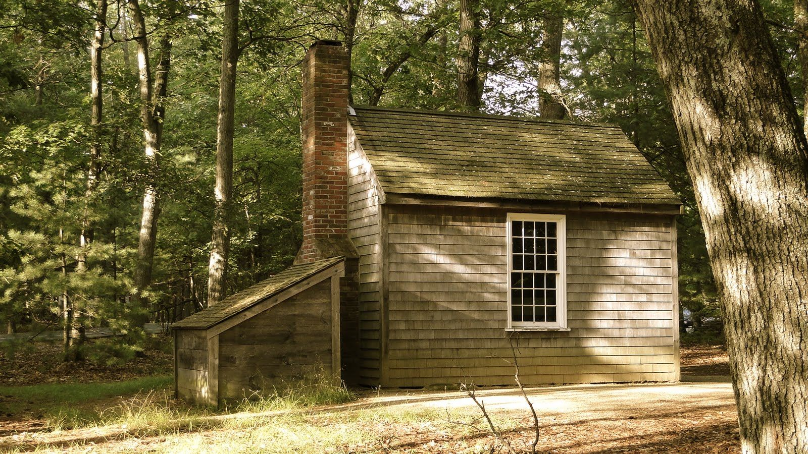 Name three characteristics that make walden by Henry David Thoreau an example of romantic escapism