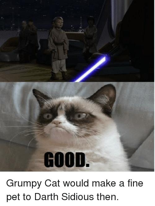 Star Wars Memes Anakin Kills Younglings Star Wars Memes Funny Star Wars Memes Star Wars Humor