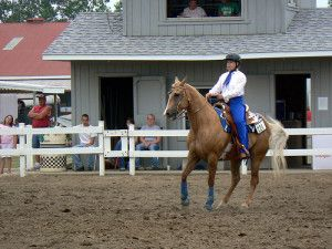 Get Your Tickets Now to the Midwest Horse Fair | Select Registry | Stay Select