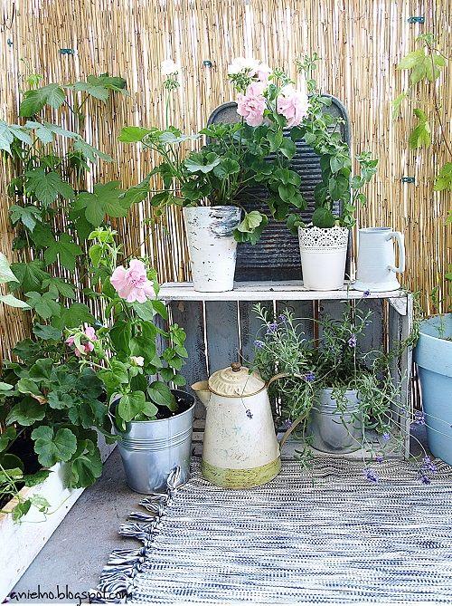 Zdja Cie Nr 5 W Galerii Wschodni Balkon W Bloku A Deccoria Pl Plants Small Places Balcony