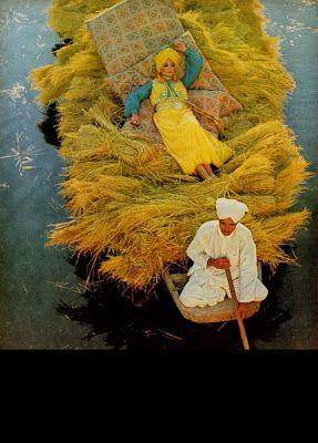 Viola Gypsy: Gypsy dice: Io amo queste cose .... Gypsy