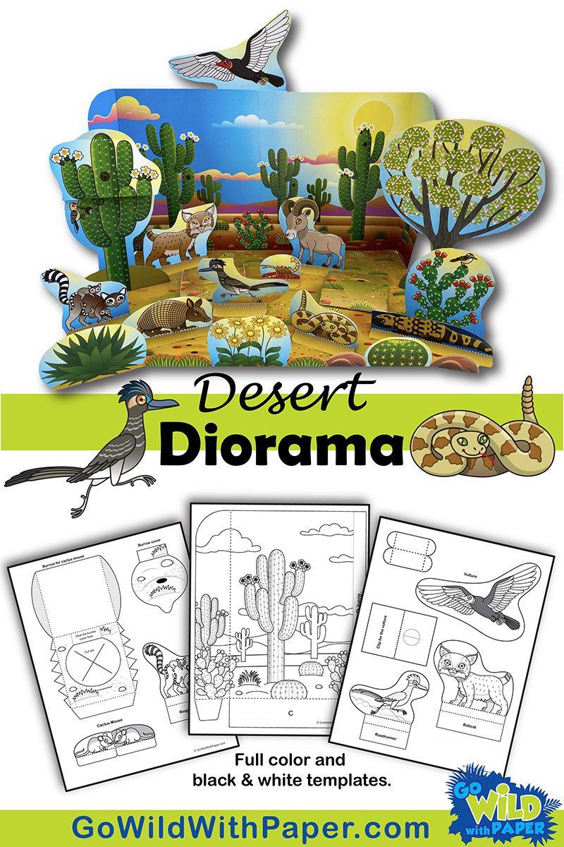 Diurnal Nocturnal Animal Craft Diorama Desert Habitat Diorama Kids Desert Diorama Animal Crafts [ 1200 x 800 Pixel ]