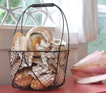 Shells in wire basket