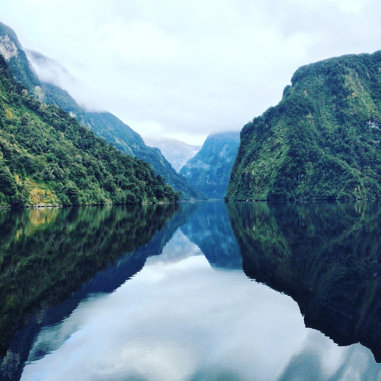 Doubtful sound fiordland new zealand 2448 x 2448 oc
