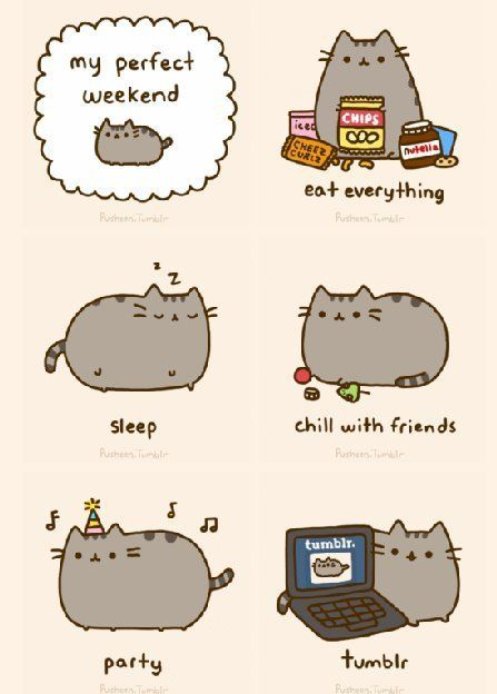 170aa428cff7e0d150ca40ce8a80ee93 pusheen cat meme pesquisa google cats things pinterest