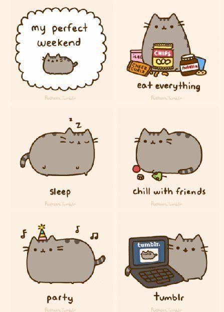 Pusheen Cat Meme Pesquisa Google With Images Pusheen Cute