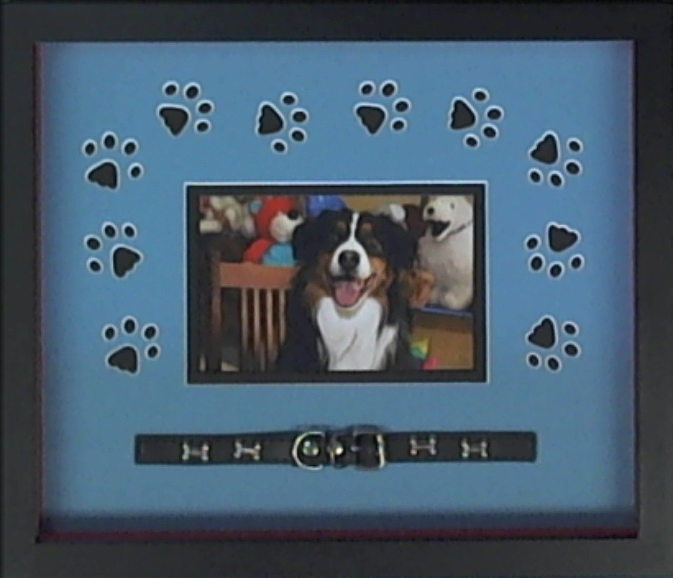 This fun pet photo is creatively custom framed using a paw print the kings custom framing pinehurst southern pines aberdeen and the sandhills jeuxipadfo Choice Image