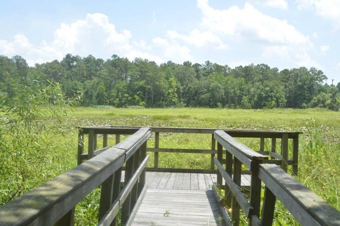 15 Trails In South Carolina You Must
