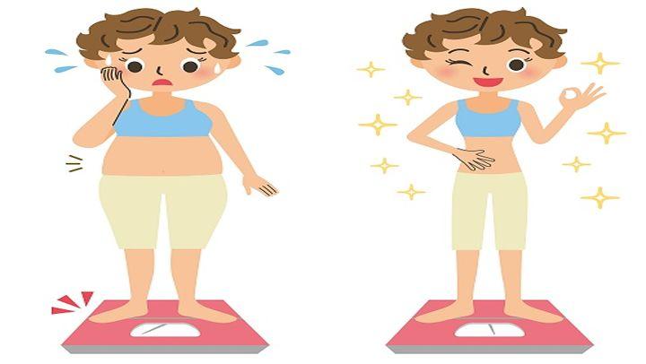 La anatomía de Metabolismo y nutricion