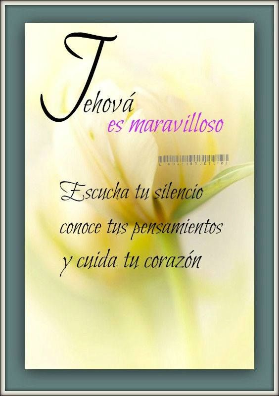 www jw org | TJ | Jehovah, Spanish quotes, Inspirational quotes